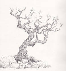 Tree Sketch by ladyfireoak
