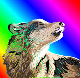 Rainbow Wolf Paint by Nativechan