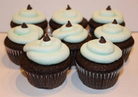 Mint Chocolate Chip Cupcakes by Deathbypuddle
