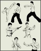 Martial arts  sketches by Amenoosa