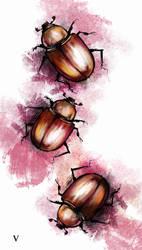 beetles by ViLebedeva