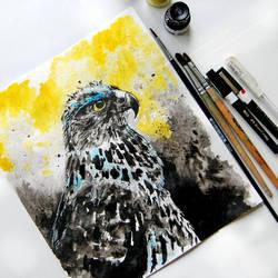 Hawk by bemain