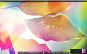 Desktop February '09 by chanq