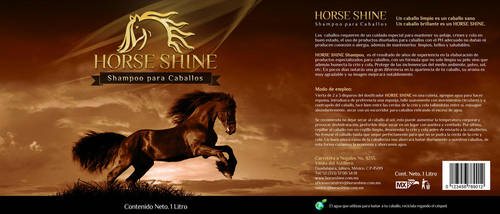 :: Horse Shine :: by monographo