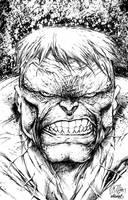 Incredible Hulk by DontBornInInk