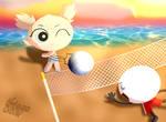 PC:Playing Voleibol by Thiago082