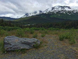 Alaska Stock, Chugach National Forest by audreystocks