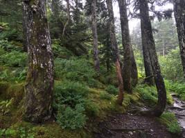 Alaska Stock, Whittier by audreystocks