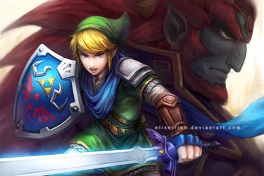 Hyrule Warriors - Link by elisetrinh