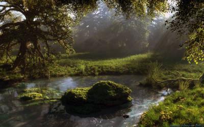 The pond by Klontak