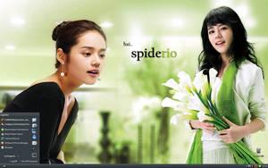 my december desktop by spiderio