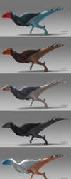 Concept - Theropod Dinosaur color variations by ArtKitt-Creations