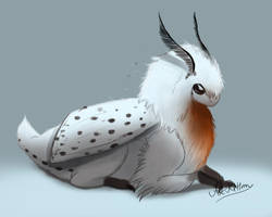 creature doodle #27 white spotted dragon moth by ArtKitt-Creations