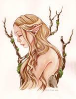 Willow by EmilieDionne
