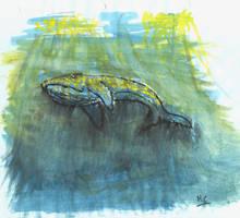 Humpback whale by Mr-Shmo-Shmo