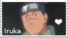 Iruka Stamp by PugAdopts