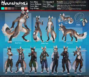 Rikkun - Reference Sheet by thanshuhai