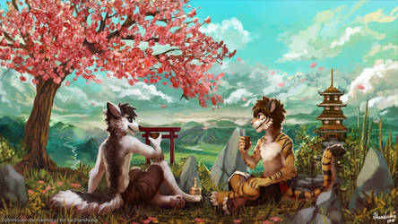 [CM] Sakura Flowers and Blue Skies by thanshuhai