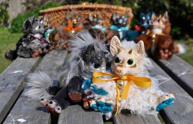 Dragon foxes 1-9 aka 'Cuddles' by Magweno