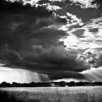 rainy day by BOsKiKroKodyL
