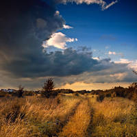 before rain by BOsKiKroKodyL
