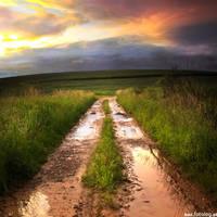 after rain by BOsKiKroKodyL