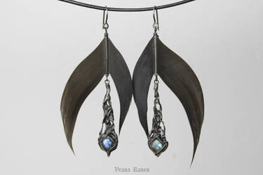 Darkest night earrings by omegaptera