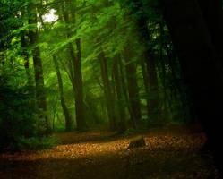 Light amongst the green by LaMusaTriste