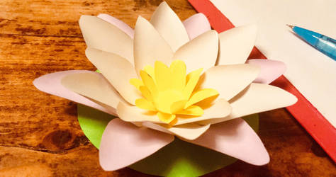 Paper flowers: Water Lily by Geena93