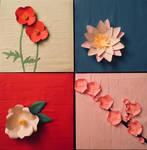 Paper Flowers by Geena93