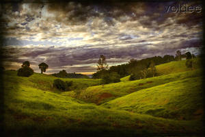 The Meadow by voldee