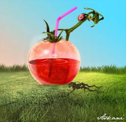Tomate - 1 by askani12