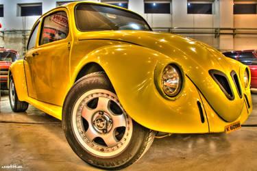 Beetle HDR by Nine80