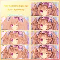 Hair Tutorial by Linjunming by linjunming