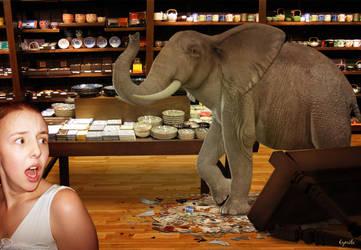 Un elephant dans un magasin de porcelaine by Eymele