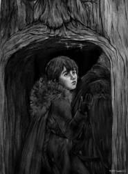 Bran Stark, Storm of Swords ASOIF by YasminGZ