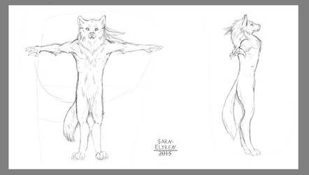 Character Sketch Commission by Sarn-Elyren