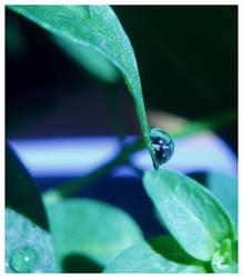 Raindrop by Plug1nbaby
