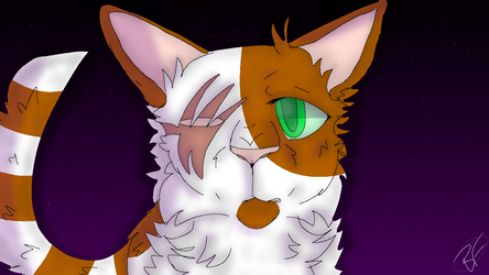 You're Here With Me - Brightheart ::Warriors:: by melondoq