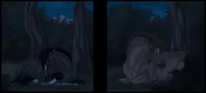 Long Nights by Paardjee