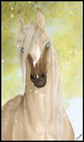 Adam by Paardjee