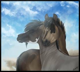 Bliss by Paardjee