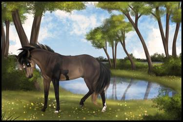 Be Impressive by Paardjee