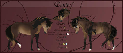 Dante Reference Sheet NEW by Paardjee
