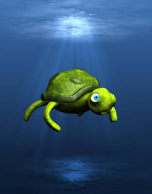 Turtle by melin