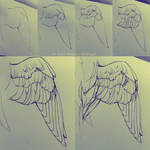 Wing Process Dorsal - High Speed by NesoKaiyoH