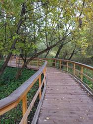 bridge in park by Vlad0209