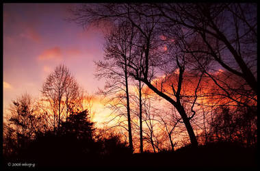 Delicate Sunset 2 by MelissaGriffin