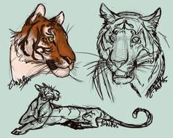 tiggers by KestrelWings