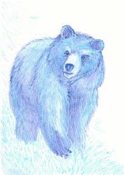 Blue Bear by The-Darkwolf